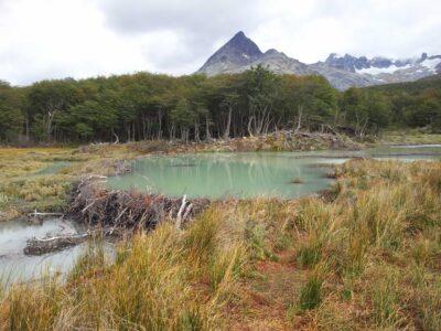 Trek Laguna Esmeralda (2)