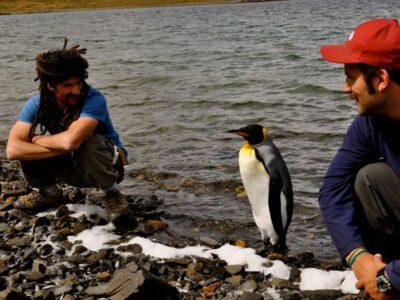 Trekking Pinguinera 7
